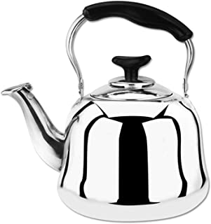 Stovetop Catering Kettle Kettle Stainless Steel Thickening Household Large Capacity Stovetop Kettle Whistling Teapot Coffee Pot Portable ZHAOSHUNLI (Capacity : 2l)