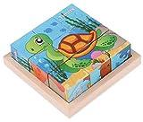 Black Temptation Cubo Puzzle de Madera para los niños con una Bandeja de Madera 6 Puzzles en 1 Conjunto (9 Piezas) # 11
