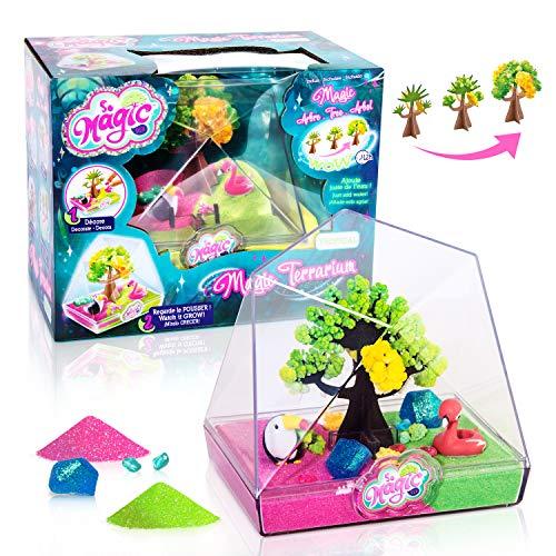 Canal Toys 003-Loisirs CreatiFS-So Magic-Medium Terrarium, MSG 003, Blau, Rosa