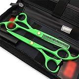 PIAOLING Tijera Peluquería Profesional - 5.5inch Profesional Tijeras de peluquería Conjunto, Galvanizado Verde Plana + Diente Tijeras Set (Color: Verde) Barberos o Uso doméstico (Color : Green)