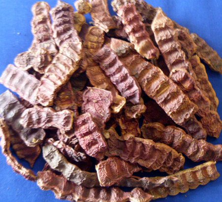 Shikakai Acacia Concinna Fruit Pods Shikakai Ancient Shampoo Hair Cleanser 500gm - 1.1 Lb by Shikakai