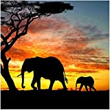 DIY 5D Diamond Painting by Number Kit, Full Drill Elephant Sunset Rhinestone Embroidery Cross Stitch Supply Arts Craft Canvas Wall Decor