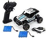 WZLJW fuerte potencia, motor de alta potencia 2.4GHz escalada coche 1:18 vehículo de campo cruzado 20 KM/H modelo de control remoto todoterreno vehículo juguete todoterreno neumáticos ggsm