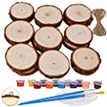 Wood Slices Ornaments 20 Pcs 2.0-2.4 inches Wood Rounds Craft Unfinished Natural Wood kit for Arts and DIY Crafts Wood Circles Christmas Ornaments Wooden Slices Pre-Installed with Small Eye Screws