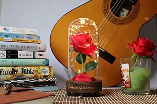 Rosa de cristal con cúpula de rosa, lámpara de flor encantada de la Bella y la Bestia rosa en cristal campana de campana de ropa, sobre base de madera, con luz LED