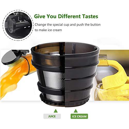 Slow Juicer Saftpresse Slow joy unter 200 Euro – BPA Frei kaufen  Bild 1*