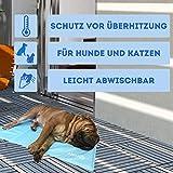 Nosli Kühlmatte Kühldecke Kühlkissen selbstkühlende Decke für Hunde / Sea blue L - 7