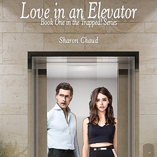 Love in an Elevator audiobook cover art