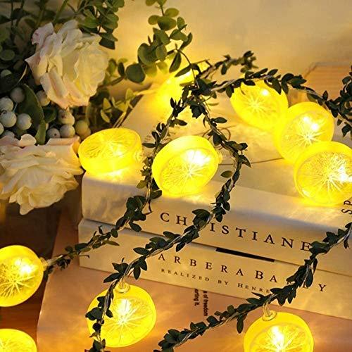 Labixun Lemon String Lights, 20 LED Twinkle Fairy Lights LED String Lights Festive String Lights Festoon Lighting for Party, Fence, Weddings, Patio, Gazebo Decorations (Yellow)