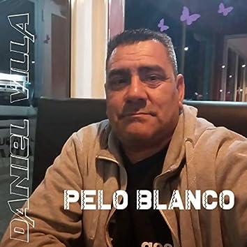 Pelo Blanco
