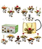 Tealyra - 12 pcs Blooming Tea and 30.5-ounce Glass Teapot Set - 12 Variety Flavors of Finest Flowering Teas - All Tea Balls Individually Sealed - Great Gift Bloom Teas Box