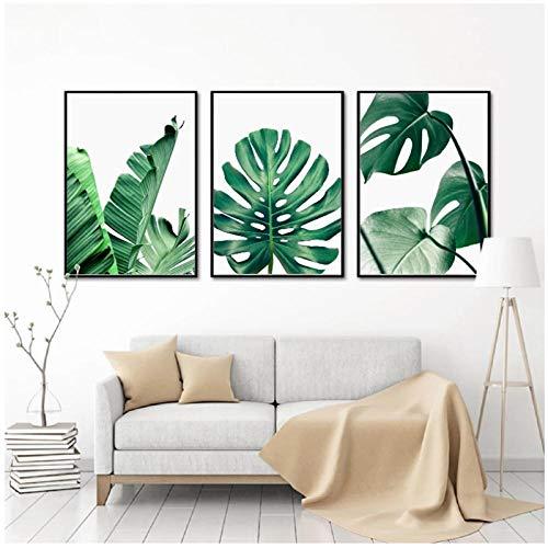 WLKQY Lienzo de pintura de plantas verdes nórdicas, impresión de lienzo de hojas de palmeras tropicales, plátano, póster, decoración de la pared del hogar, 40x60cmx3 sin marco