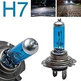 Riloer H7 Faro per auto, 12V 100W LED Conversion Globe Lampadine Fascio 8500K, Faro alogeno luminoso Night Breaker