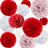 ANSOMO Red Tissue Paper Pom Poms Flowers Party Decorations 12' 10' 8' 6' Pack of 12