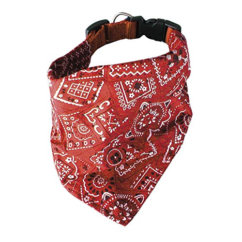 ICA DL1075 Pañuelo Collar Cowboy