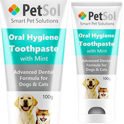 PetSol Tandpasta voor honden - Verbetering van de gezondheid van tandvlees en tand - Verfris de adem van de hond Verwijder & verminder tandplak (Mint)
