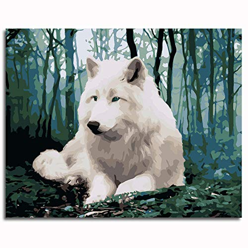 JiaHM White Wolf Paint by Numbers for Adults 40x50cm-Contains Built-in Framework Theme Decor for Bedroom