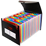 QWSNED Carpeta,Organizador de archivos de acordeón,Carpeta de archivos expansible,Organizador de archivos expandible de 60 bolsillos,Carpeta de tamaño A4