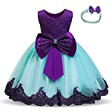 HNXDYY Baby Girls Lace Embroidered Bowknot Birthday Christmas Party Dress Size (110) 3-4 Years Dark Purple