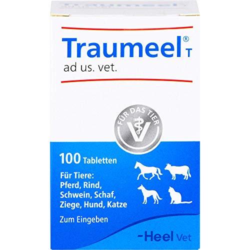 traumeel Tabletten für Katzen
