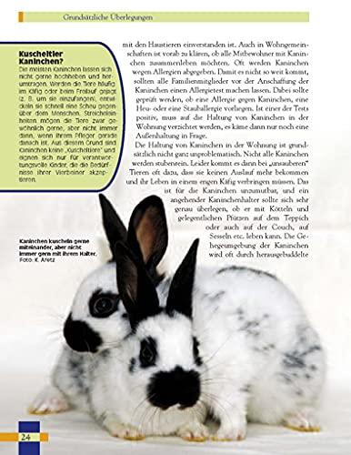 Leben mit Kaninchen: Der ausführliche Leitfaden für die Haltung von Kaninchen. (NTV Kleinsäuger) - 2