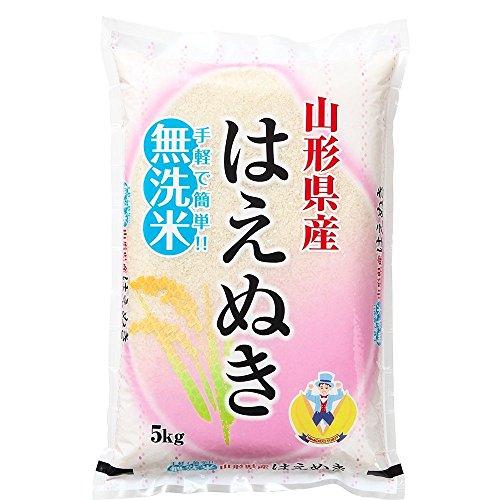 【無洗米】 山形県産 はえぬき 10kg(5kg×2袋) 令和2年産 rhm1002