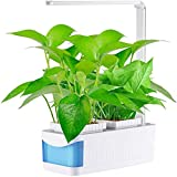 WeiX Smart Garden Maceta,Sistema de Cultivo Hidropónico,Kit de jardín Interior con función de lámpara de Escritorio, luz LED para Cultivo de Plantas, Altura Ajustable, para Cocina casera