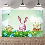 Primavera Pascua Conejo Prado Flores Color Huevos Conejito Niños Foto Telones de Fondo Banner Fotografía Estudio Fondo A2 10x10ft / 3x3m