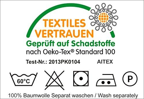 Julie julsen Serviette pour invités 30 x 50 cm Disponible en 23 Couleurs doux et absorbant 500 gsm certifié Öko-Tex, Coton, Bleu ciel, 30 cm x 50 cm