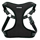 Best Pet Supplies Voyager Step-in Flex Dog Harness - All Weather Mesh, Step in Adjustable Harness for Small & Dogs, Inc, Inc, Inc, Gray Base, Medium