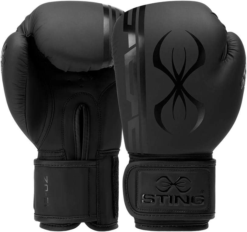 STING Armaplus Training Boxing Virginia Beach Mall Ranking TOP20 Sparring Gloves