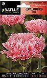 Semillas de Flores - Clavel Chabaud Doble rosa - Batlle
