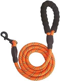 Guinzaglio addestramento per cani Retriever riflettente nylon lungo Guinzaglio Cane Formazione per medie e grandi cani 2 m 3 m 5 m 10 m 15 m corda
