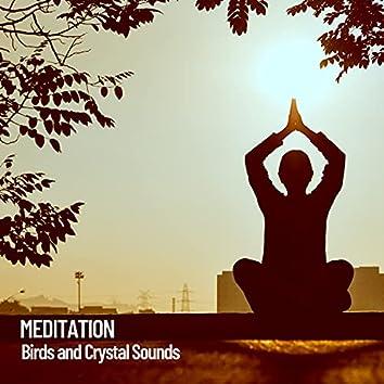 Meditation: Birds and Crystal Sounds