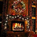 GIGALUMI LED Kugel Lichterkette 20 Silber Metall Kugel 2,5m Lange Warmweiß Batteriebetrieben Innen Beleuchtung Dekoration für Party, Weihnachten, Halloween, Zimmer usw. - 5