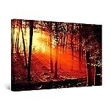 Startonight Cuadro Moderno en Lienzo Amanecer Rojo en el Bosque, Paisaje Naturaleza Para Salon Decoración Grande 80 x 120 cm