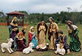 12 Piece Outdoor Nativity Set, Multicolored