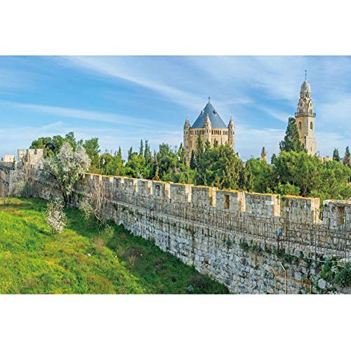 CSFOTO 10x7ft Jerusalem Garden Backdrop Stone City Wall Green Hill Church Tower Dormition Abbey Background for Photography Room Decor Wallpaper Audlts Photo Booth