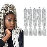 Fani Braiding Hair Kanekalon Crochet Braids Hair Silver Grey Color Braiding Hair Extensions Synthetic High Temperature Fiber 24Inch 5Pcs/Lot 100g/Pc