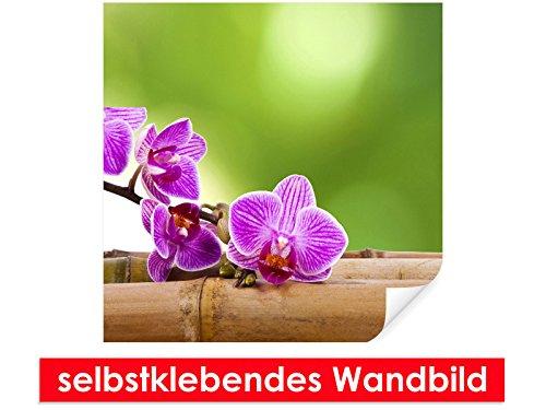 Image murale auto-adhésif Orchid on – Bambou – Facile à coller – Wall Poster Print, Wall Paper,, film vinyle avec point décoratif pour murs, portes, meubles et toutes les surfaces lisses de Trend murs, 80 x 80 cm