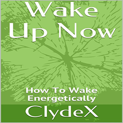 Wake Up Now audiobook cover art