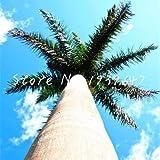 honic 50 pezzi sago palm tree bonsai cycas revoluta tropical fossil facile da coltivare cycad bonsai per indoor pianta in vaso di trasporto