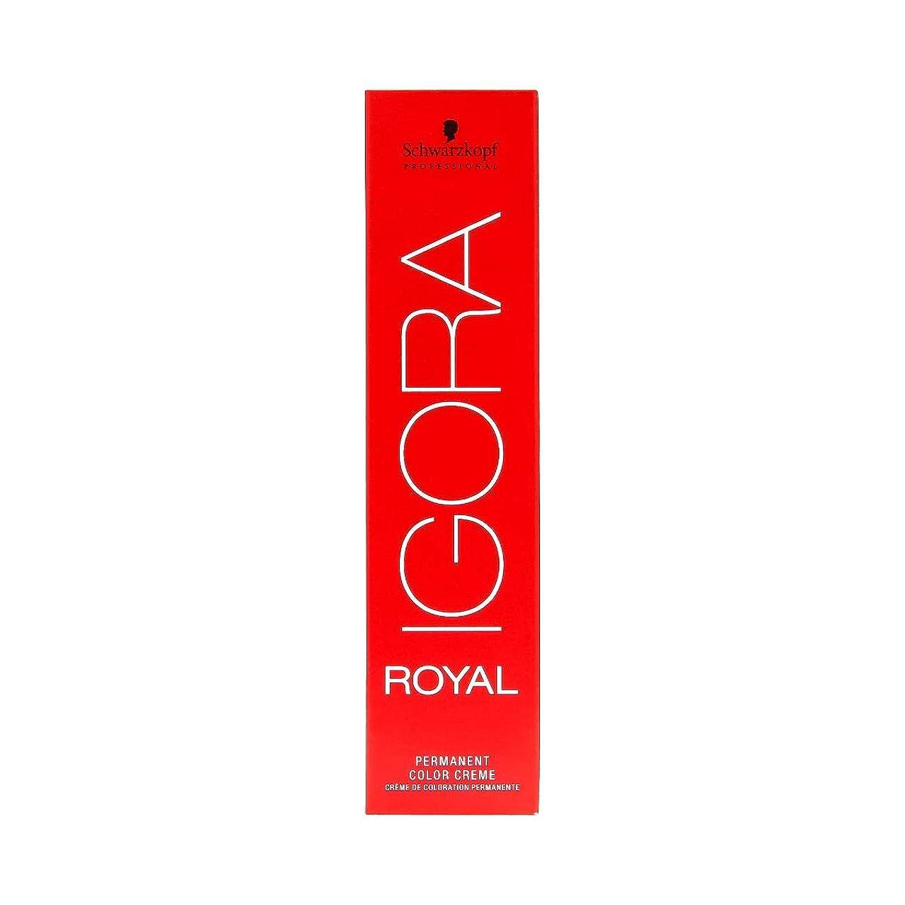 黒板ハードリング建物シュワルツコフ IGORA ロイヤル6-65パーマネントカラークリーム60ml[海外直送品] [並行輸入品]