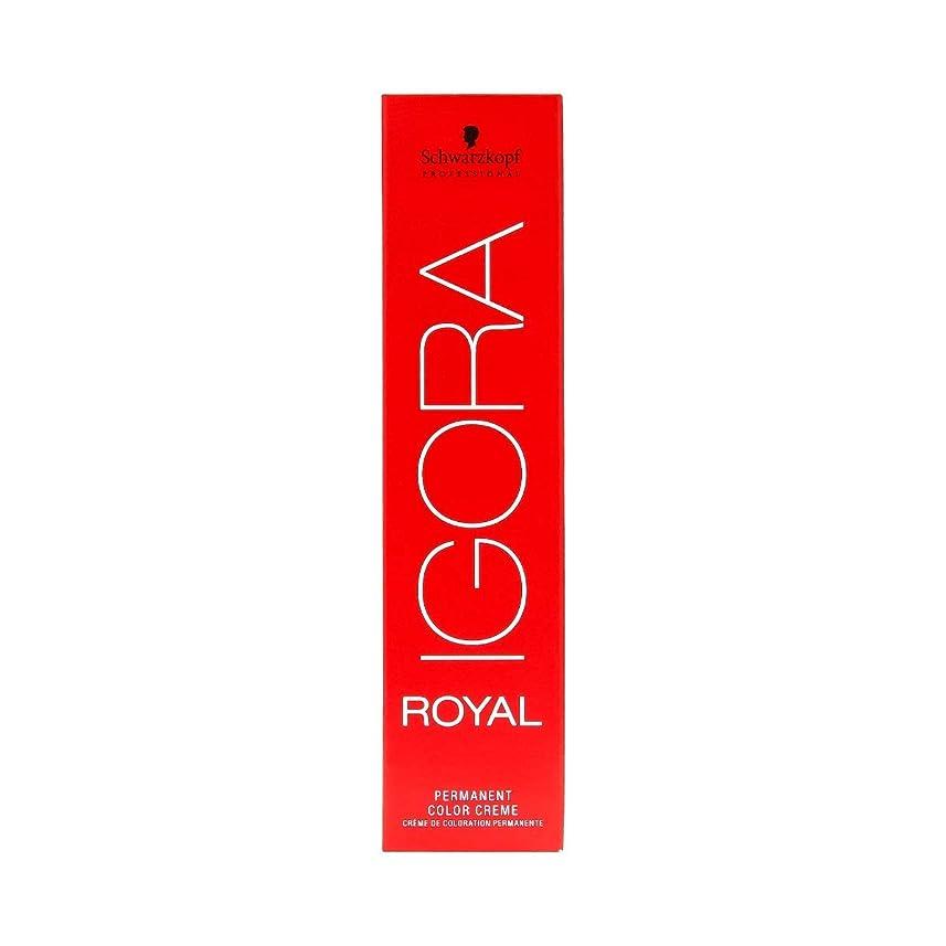 切り刻む膜もっとシュワルツコフ IGORA ロイヤル6-6パーマネントカラークリーム60ml[海外直送品] [並行輸入品]