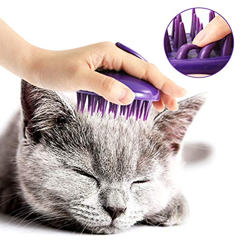 Top kong zoom groom cat brush for 2021