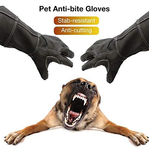 1 paar huisdier hond kat dier anti-bijten handschoenen rundleer verlengde beschermende handschoenen anti-kras handschoenen, voor kat hond en tuinieren werk handschoenen huisdieren training voeden handschoenen