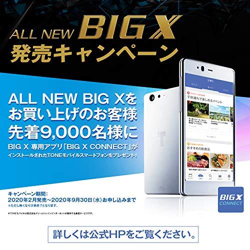 アルパインカーナビフローティングBIGX11型XF11NX無料地図更新/フルセグ/Bluetooth/Wi-Fi/Android&iPhone対応/DVD/SD/USB/HDMI/ハイレゾ/VICS/WXGA