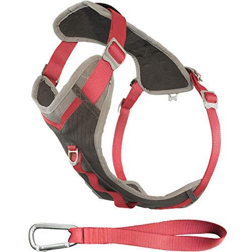 Kurgo Journey Multi-Use Dog Harness, Reflective Harness, Dog Running Harness, Dog Walking Harness, Dog Hiking Harness, Coral/Grey, Small