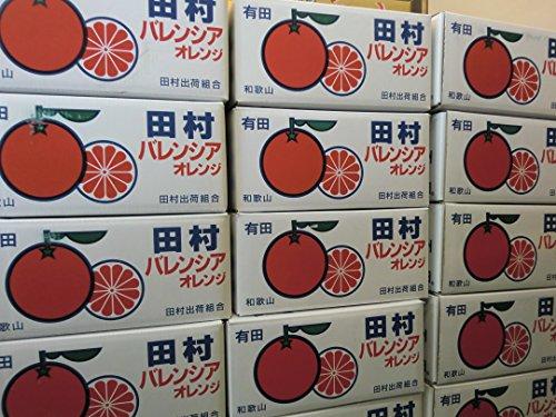 和歌山県有田 田村産みかん バレンシャオレンジ43個入り小玉