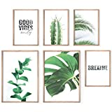 Bold Design Aesthetic Posters Set - Stylish Photo and Quote Prints - 6 Unframed Plant Wall Art Pictures - 2 x 17x11; 4 x 11x8 - Wall Decor Posters & Prints for Home or Office - Premium Posters for Living Room or Bedroom